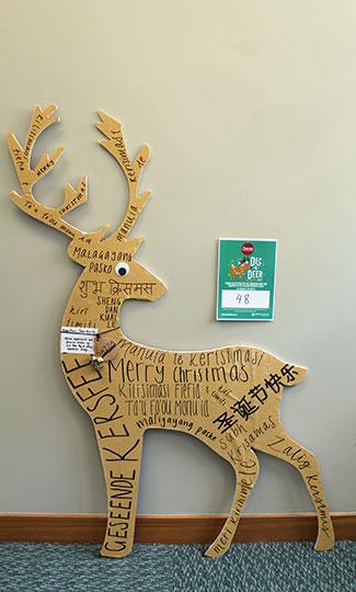 deer 48