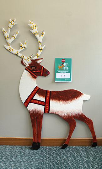 deer 77